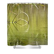 On The Pond Shower Curtain
