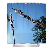 On The Prairie #10 Shower Curtain