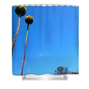 On The Prairie #9 Shower Curtain