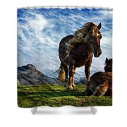 On The Range Shower Curtain