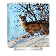 On The Ridge Shower Curtain