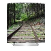 Victorian Locomotive Tracks Shower Curtain