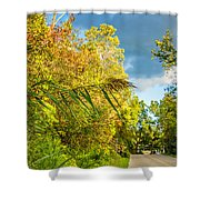 On The Road To Autumn Shower Curtain