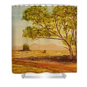 On The Road To Broken Hill Nsw Australia Shower Curtain