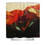 On The Road To Enlightenment Shower Curtain