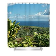 on the road to Hana Shower Curtain
