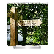 On The Road To Ruin Shower Curtain
