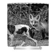 On The Scent Monochrome Shower Curtain