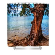 On The Shore. Mauritius Shower Curtain