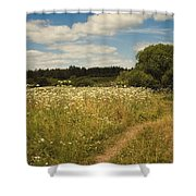 On The Summer Meadow II. Russia Shower Curtain