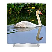 On The Swanny River Shower Curtain