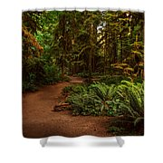On The Trail To .... Shower Curtain by Randy Hall