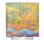On The Way To The Cascades Shower Curtain