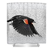 On The Wing - Red-winged Blackbird Shower Curtain