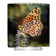 On The Wings Of A Butterfly... Shower Curtain