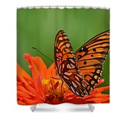 On The Wings Of A Butterfly Shower Curtain