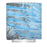 On The Wings Of A Winter Wind Shower Curtain