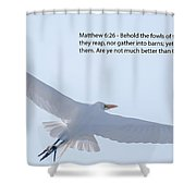 On The Wings Of Flight Shower Curtain