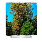 On Top Of Maple Ridge - Old Forge New York Shower Curtain by David Patterson