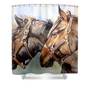 Horse In Watercolor On Watch Shower Curtain