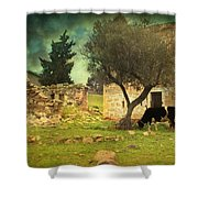 Once Upon A Time In Phokaia  Shower Curtain