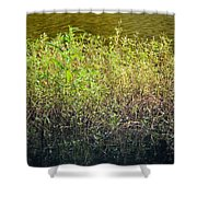 Once Upon An Egret's Home Shower Curtain