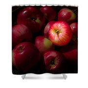 One A Day Shower Curtain