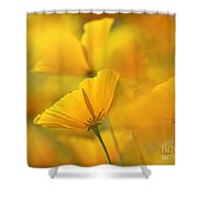 One Among Many Shower Curtain