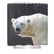 One Angry Polar Bear Shower Curtain