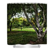 One Autumn Day - Central Park - Nyc Shower Curtain