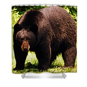One Big Bad Momma Shower Curtain by Lori Tambakis