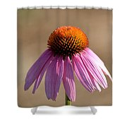 One Coneflower Shower Curtain