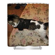 One Cool Cat Shower Curtain
