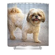 One Happy Little Dog Shower Curtain