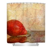 One II Shower Curtain