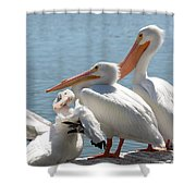 One In Every Crowd Shower Curtain