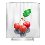 One Leaf Three Crapapples Shower Curtain