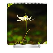 One Lily Almost Alone Shower Curtain