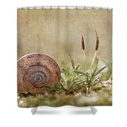 One Moment In Time Shower Curtain