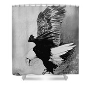 One Of My Eagles Shower Curtain