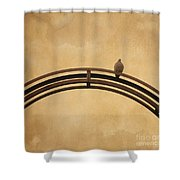 One Pigeon Perched On A Metallic Arch. Shower Curtain