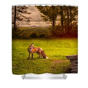 One Red Fox Shower Curtain