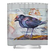 One Sided Conversation Shower Curtain