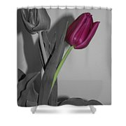 One Stands Alone Shower Curtain