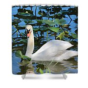 One Swan In The Lilies Shower Curtain