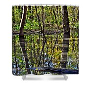 One Variable Shower Curtain