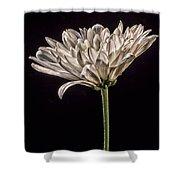 One White Flower Shower Curtain