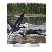 One Winged Flight Shower Curtain