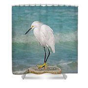 One With Nature - Snowy Egret Shower Curtain