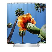 One World One Love  Shower Curtain